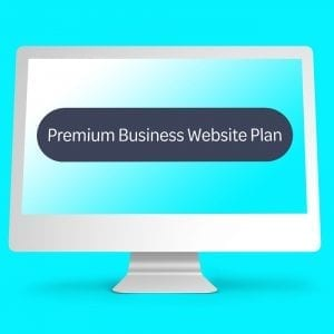 Premium Business Website Plan