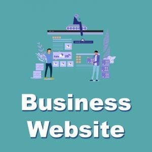 Business Website Package